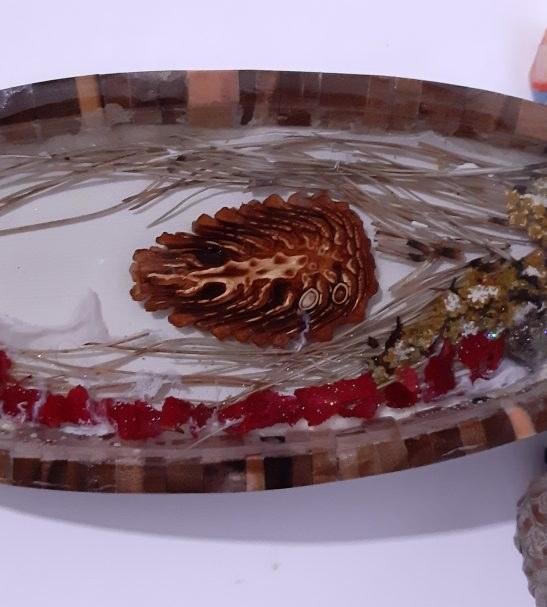 تابلوی رزین اپوکسی طرح گل کاج