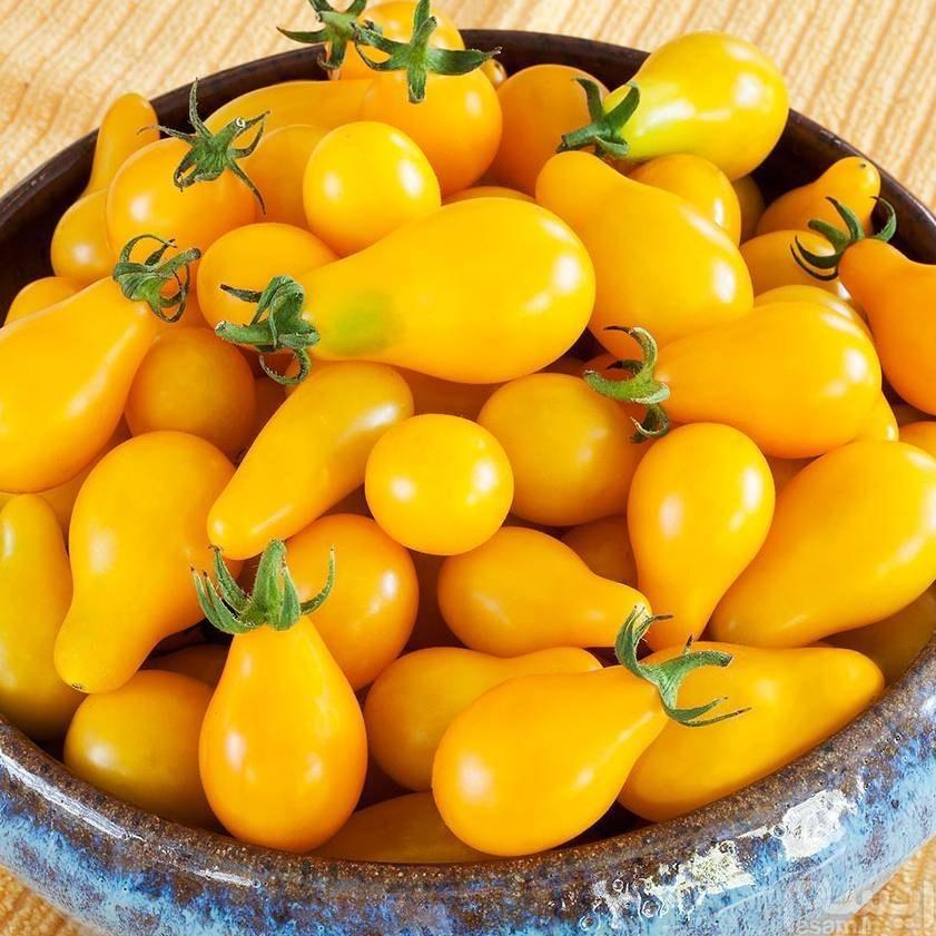 بذر گوجه گلابی زرد |