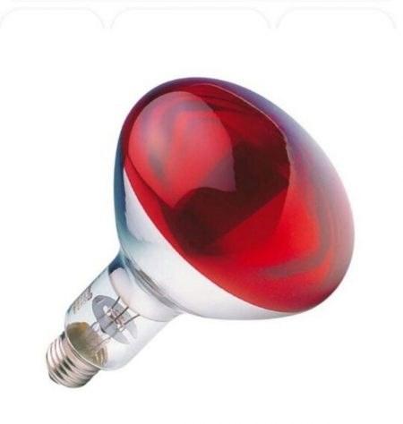 لامپ مادون قرمز 250 نور