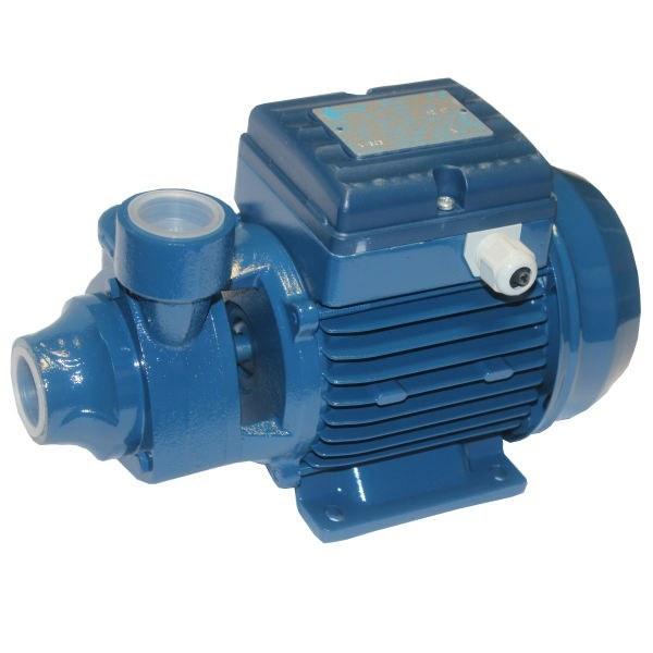 تصویر الکتروپمپ آب محیطی 0/5 اسب پنتاکس ایتالیا مدل pm45 water pump 0/5Hp pentax pm45