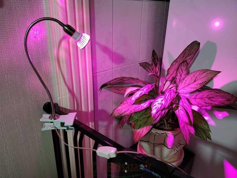 تصویر لامپ رشد گیاه ۹ وات با پایه خرطومی