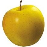 سیب زرد مراغه (درجه 2)