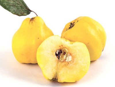تصویر میوه به