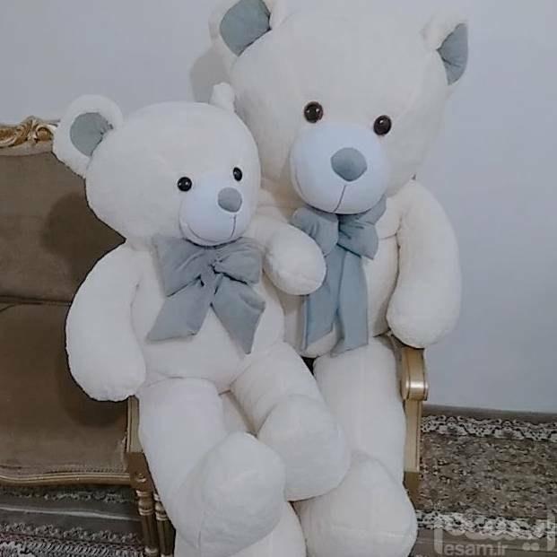 عروسک   خرس   بزرگ   ،    شاسخین  خرسی