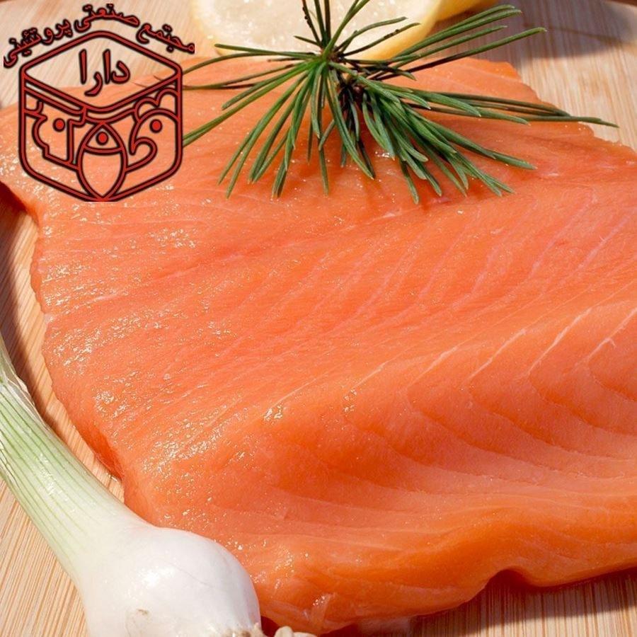 فیله ماهی سالمون نروژی |