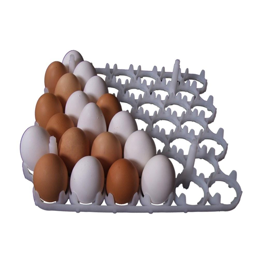 تصویر شانه تخم مرغ دستگاه جوجه کشی 42 عددی پارس مدل PT-402 Pars Egg Tray PT-402