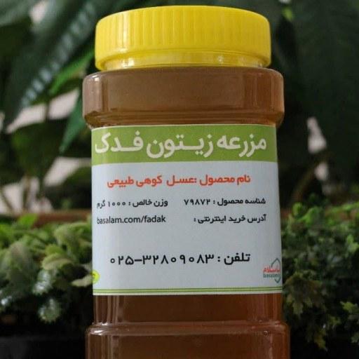 عسل کوهی طبیعی | عسل کوهی کاملا طبیعی.
