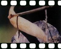 main images آموزش ساخت تیر و کمان