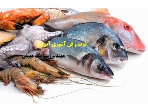 فوت و فن آشپزی آبزیان (The know cooking fish) |