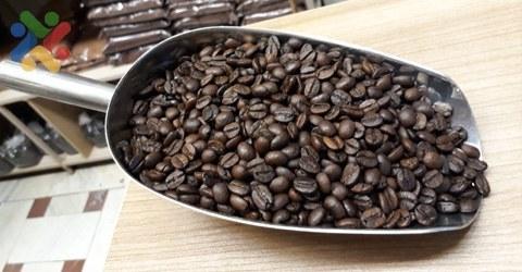 دانه قهوه عربیکا برزیل |