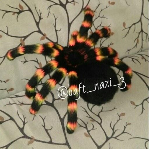 تصویر عنکبوت بافتنی