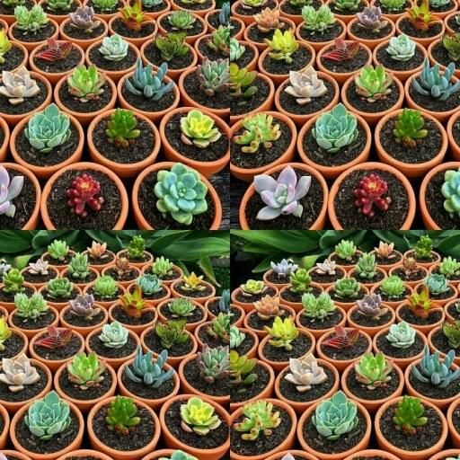 تراریوم و گل و گیاه