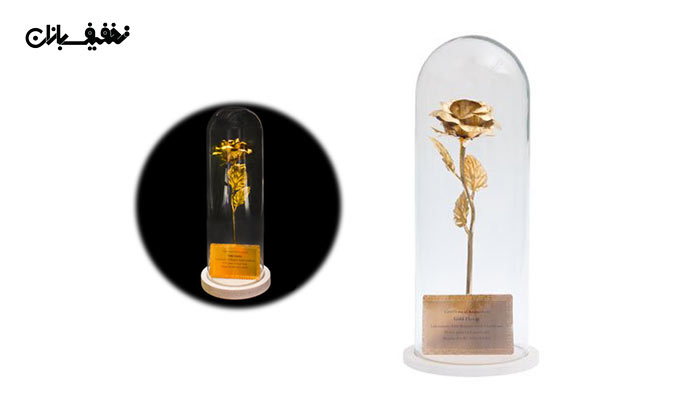 شاخه گل رز طلا کادویی با قاب پیرکس با ۲۹% تخفیف و |