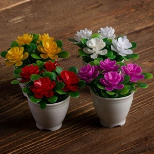 پک چهار عددی گلدان دکوری |