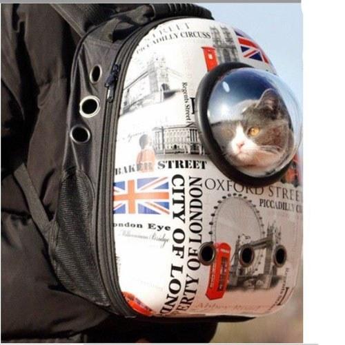 تصویر کیف فضایی گربه و سگ طرح انگلیسی