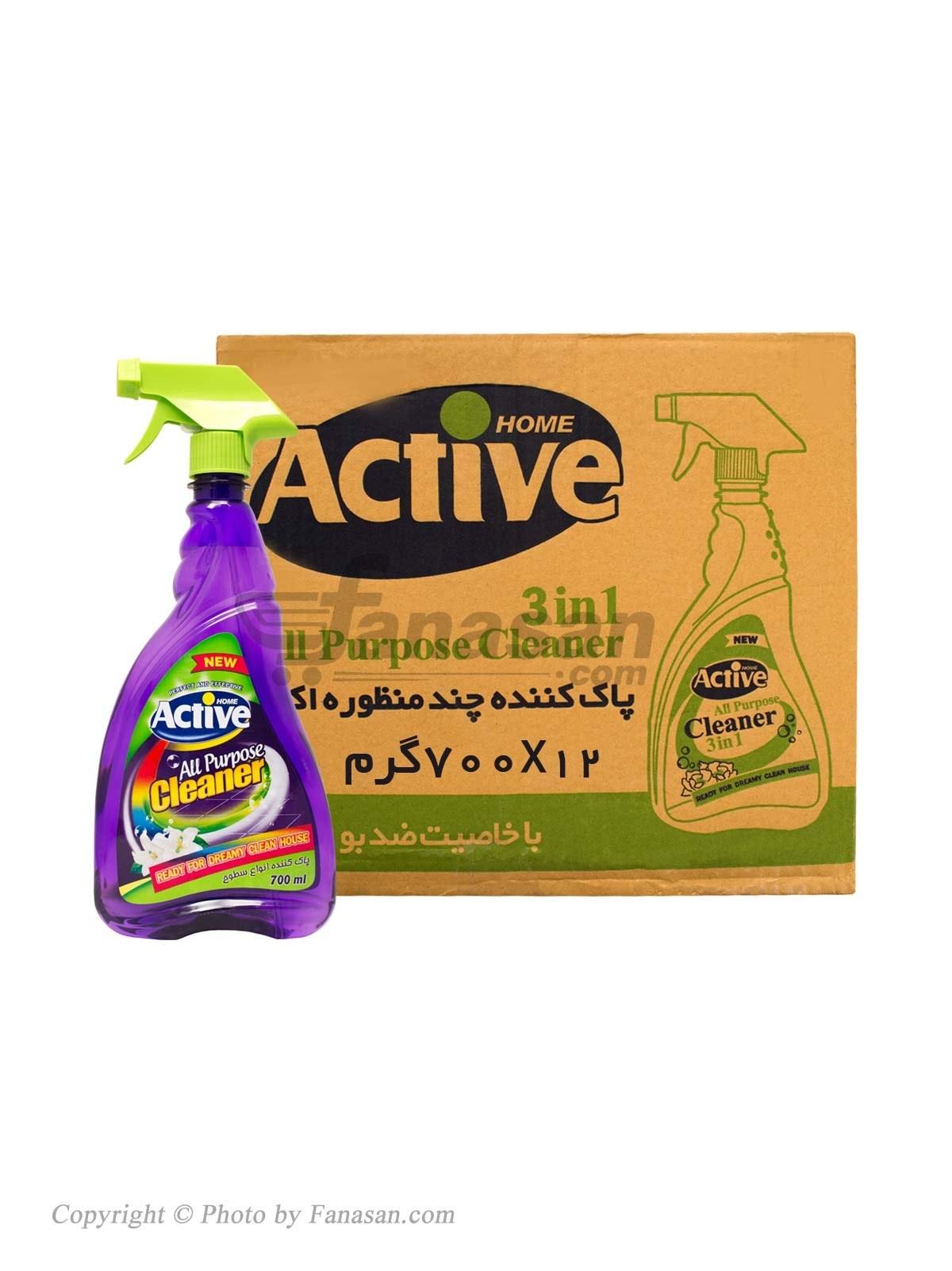 کارتن 12 عددی پاک کننده چند منظوره اکتیو 700 میلی لیتر | Active Multi Purpose Cleaner 700 gr