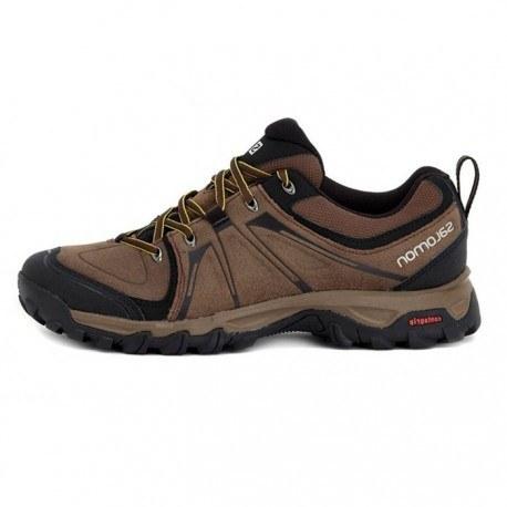 کفش پیاده روی مردانه سالامون مدل EVASIN LTR