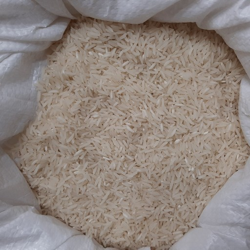 عکس برنج ایرانی طارم محلی کشت دوم  برنج-ایرانی-طارم-محلی-کشت-دوم