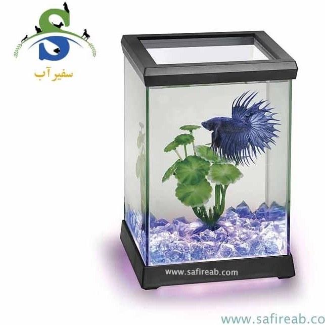 image آکواریوم کوچک ماهی بتا (فایتر) 4.95 لیتری اوشن فری در دو رنگ