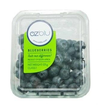 بلوبری Blueberry |