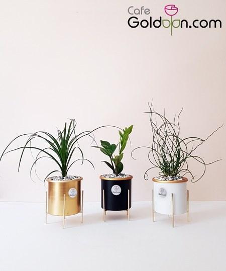 تصویر خرید گلدان پایه دار فلزی رومیزی