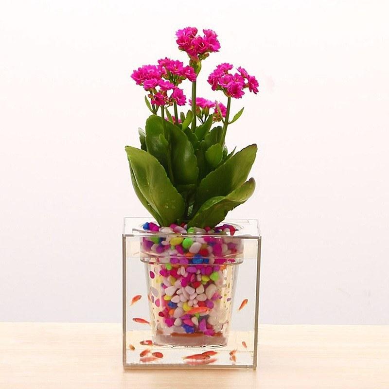 تصویر گلدان آکواریومی