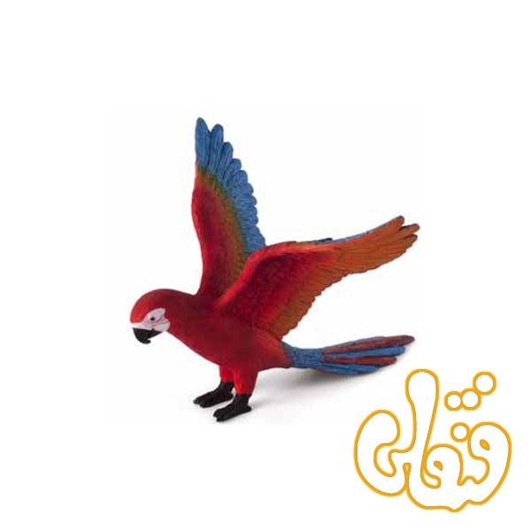 عکس طوطی Parrot 387263  طوطی-parrot-387263