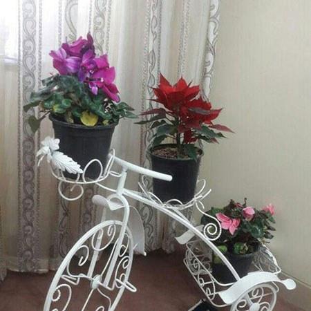 استند گل طرح دوچرخه |