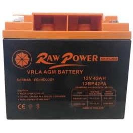 باتری یو پی اس 12 ولت 42 آمپر ساعت راو پاور مدل RW 12-42 |