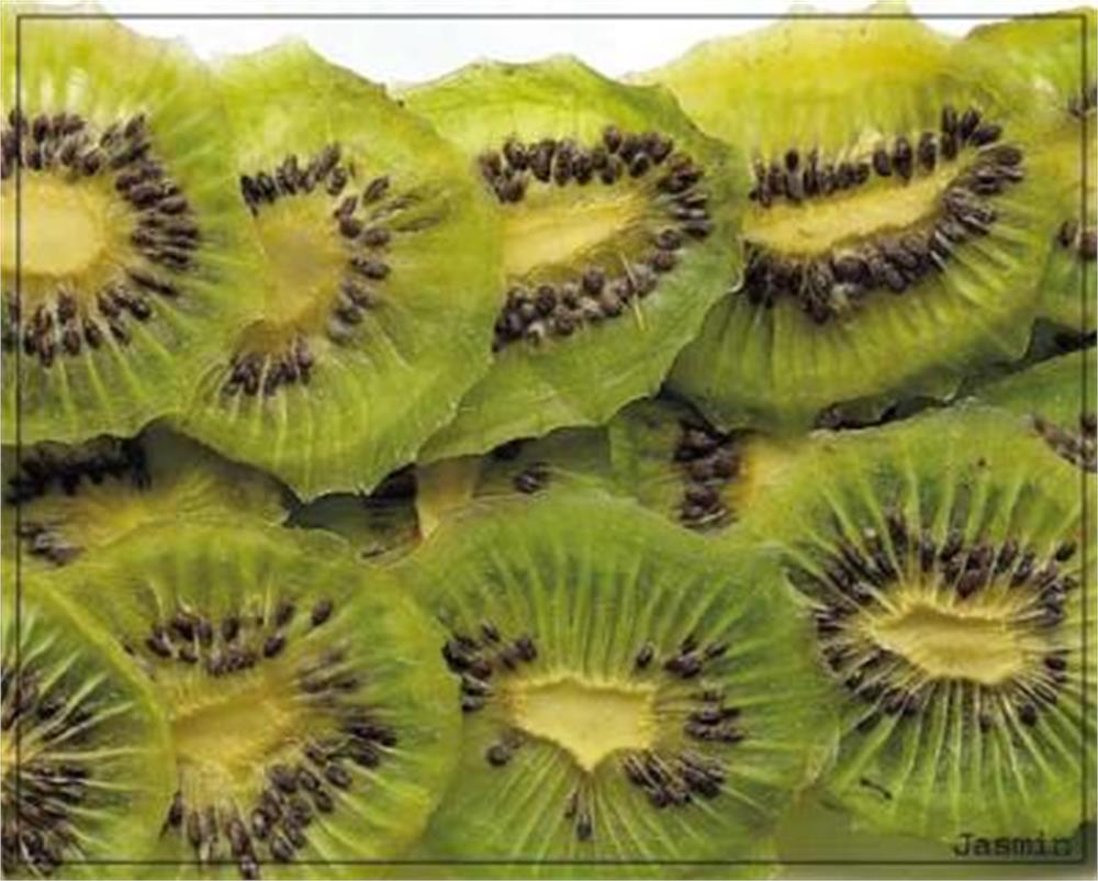عکس میوه خشک کیوی Dried  Kiwi میوه-خشک-کیوی