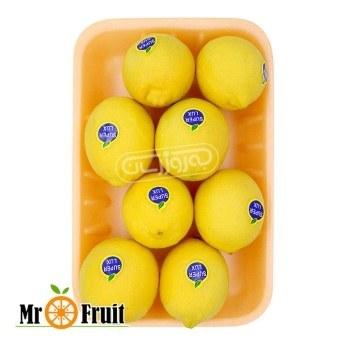 لیمو ترش سنگی مسترفروت ۸۰۰گرمی