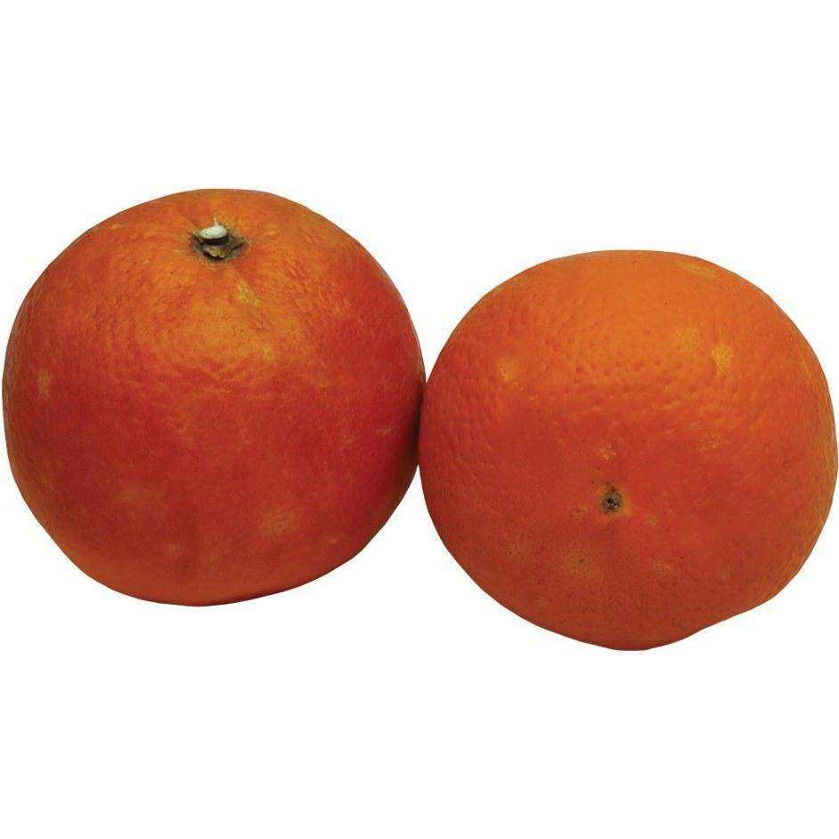 میوه پرتقال درجه یک با 1 کیلوگرمی