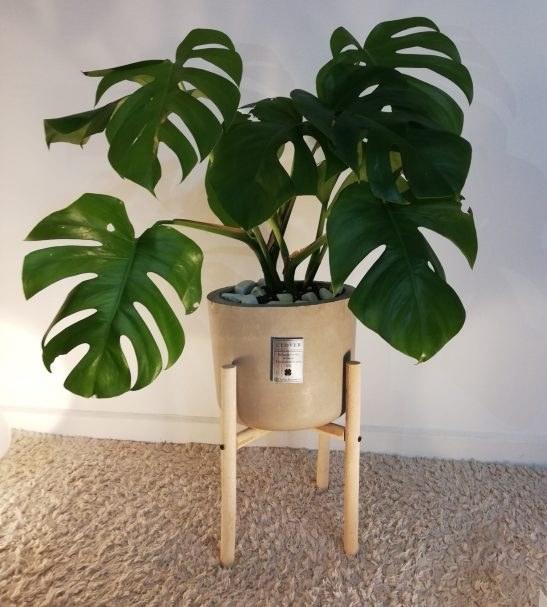 گلدان بتنی پایه چوبی کد C201 |
