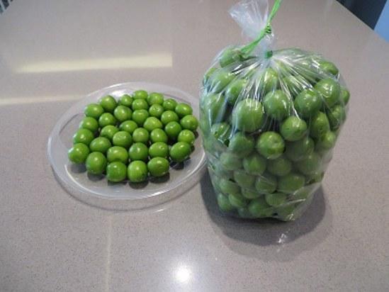 تصویر آلوچه یا گوجه سبز گرمسار -یک کیلو