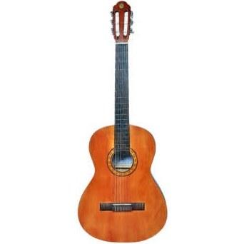 گیتار کلاسیک کد E01 |