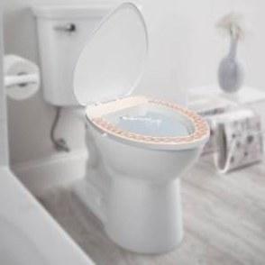 تصویر بیده توالت فرنگی راحت پاک