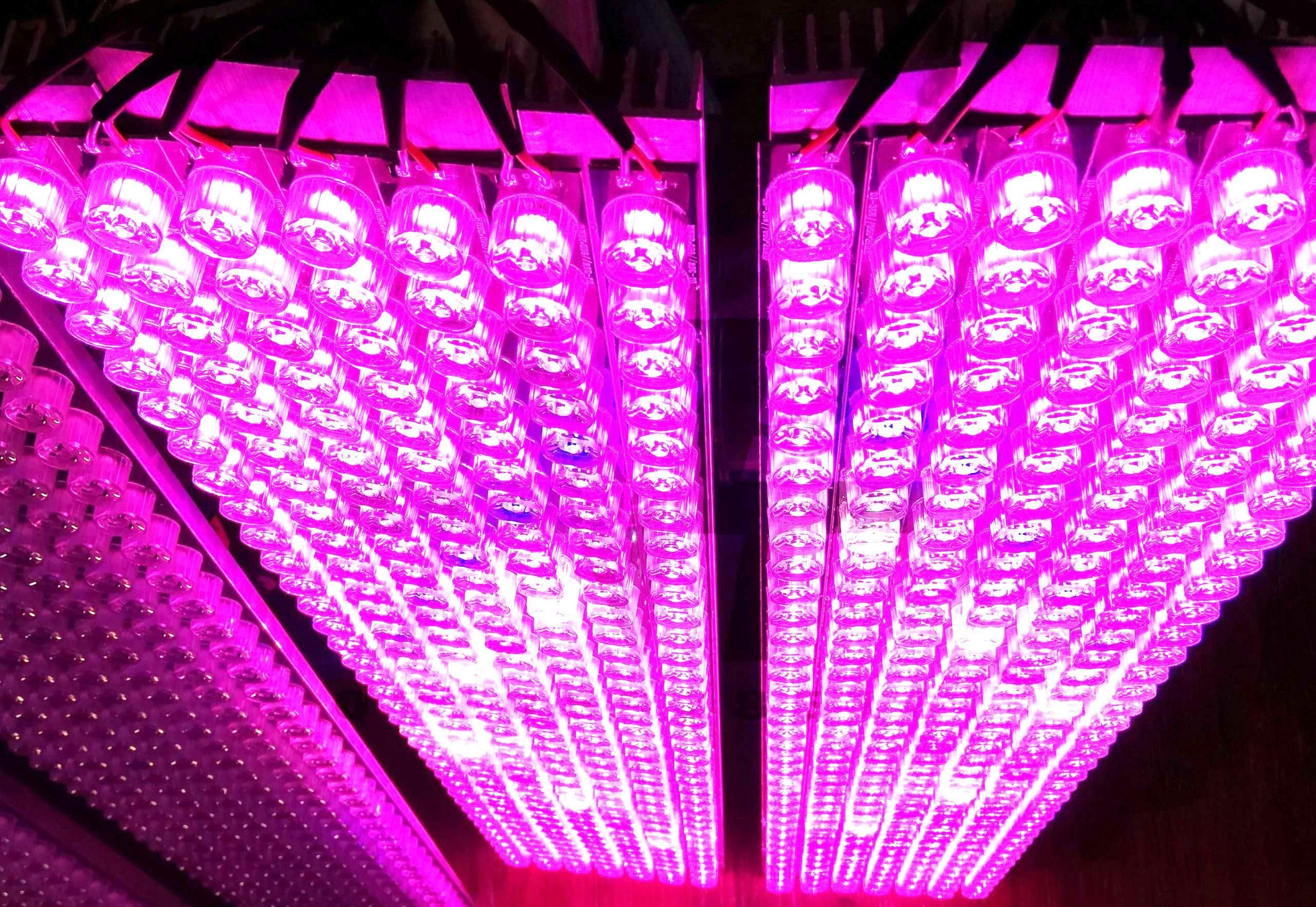 تصویر پنل رشد گیاه ۱۰۰۰ واتی اقتصادی فول اسپکتروم