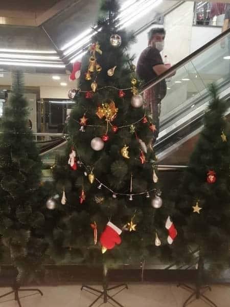 درخت کریسمس سوزنی تایلندی 240 سانتی سبز