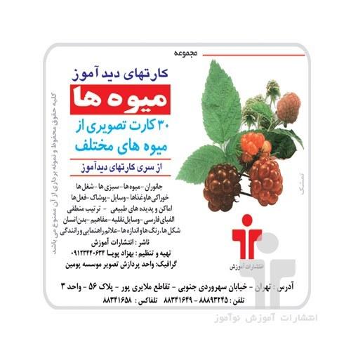 تصویر فلش کارت آموزشی دیدآموز میوه ها