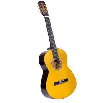 گیتار دایموند مدل TS600 |
