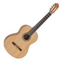 تصویر گیتار کلاسیک آریا مدل AK-30