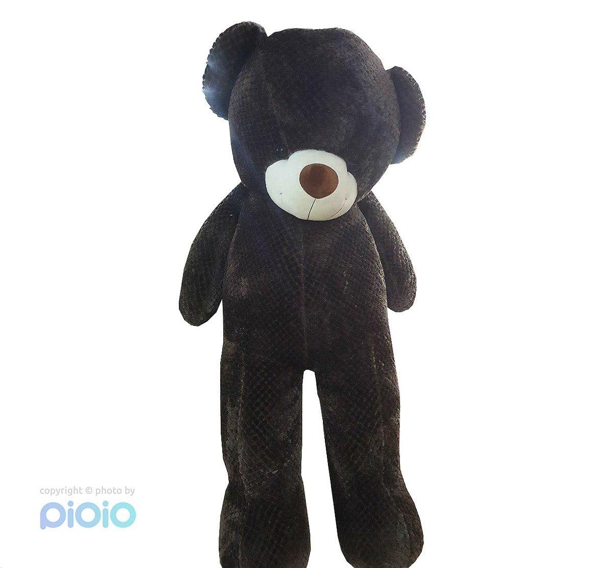 عروسک خرس دو متری بزرگ پولیشی خارجی |