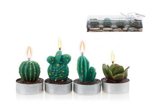 شمع تزئینی طرح کاکتوس بسته ۴ عددی