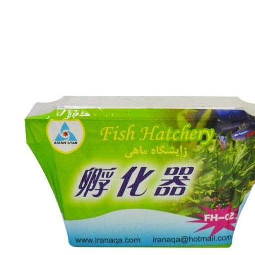 تصویر زایشگاه ماهی آکواریومی آسیان استار – Asian Star Fish Hatchery