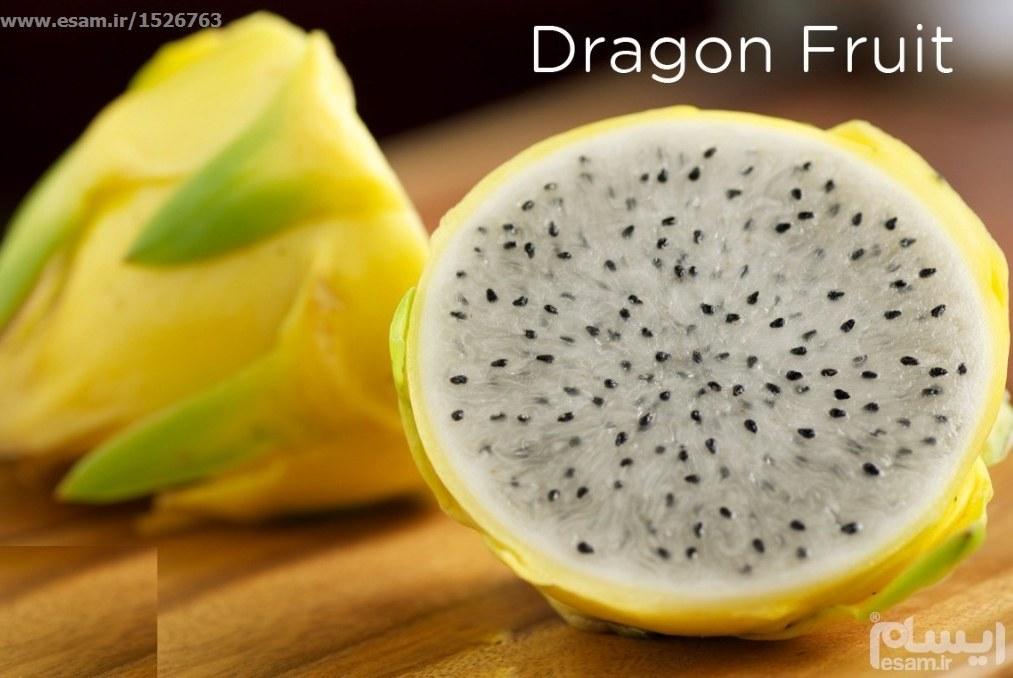 بسته 20 عددی بذر میوه اژدها زرد آسیایی Yellow Dragon Fruit گونه زرد بدون خار و درشت | بذر میوه اژدها زرد آسیایی Yellow Dragon Fruit