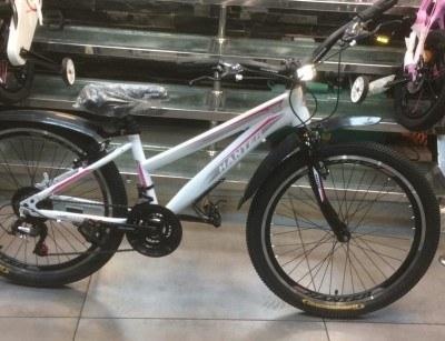 تصویر دوچرخه  هانتر (hanter) سایز 24