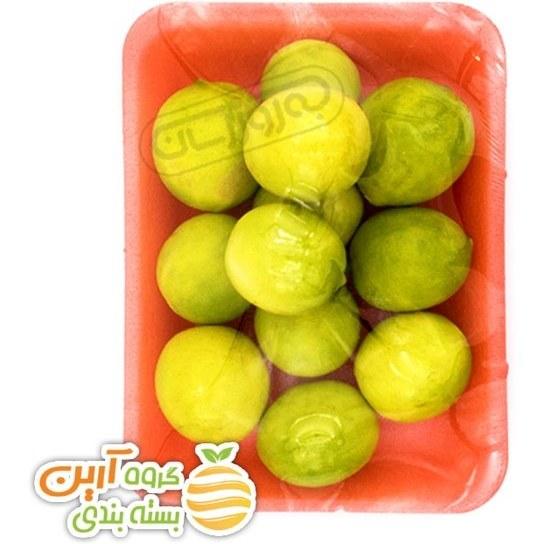 تصویر لیمو ترش ریز شیرازی دستچین آرین 550 گرمی