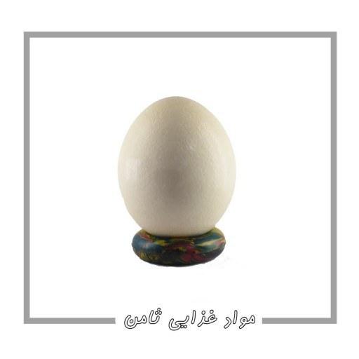تخم شتر مرغ  