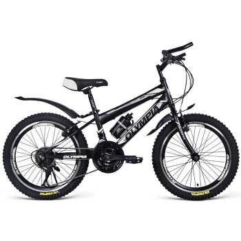 دوچرخه دو کمک کوهستان المپیا مدل 2029 سایز 20   Olympia 2029 Mountain bicycle Size 20