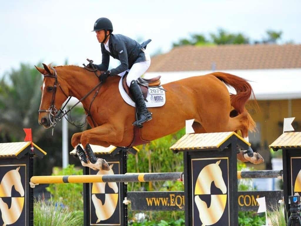 تصویر اسب سواری به صورت pptx و word